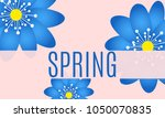 spring flowers background with... | Shutterstock .eps vector #1050070835