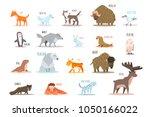 set of arctic and antarctic...   Shutterstock .eps vector #1050166022