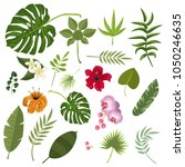 tropical leaves and flowers.... | Shutterstock .eps vector #1050246635