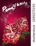 half of fresh pomegranate with... | Shutterstock . vector #1050275192