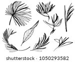 ink line drawn tropical leaves. ... | Shutterstock .eps vector #1050293582