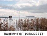 wooden pier  with birdwatching... | Shutterstock . vector #1050333815