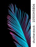 tropical and palm leaves in... | Shutterstock . vector #1050345806