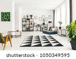 black and white rug in a living ... | Shutterstock . vector #1050349595