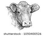 cow head portrait illustration  ...   Shutterstock .eps vector #1050400526