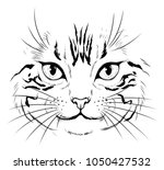 black and white realistic cat... | Shutterstock .eps vector #1050427532