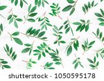 leaf pattern. pistachio leaves... | Shutterstock . vector #1050595178