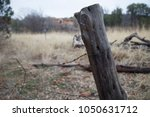 barbed wire fence wood post... | Shutterstock . vector #1050631712