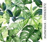 seamless watercolor... | Shutterstock . vector #1050632372