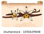 Vanilla Pods And Flower Hand...
