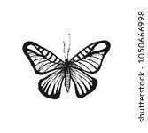 butterfly sketch. hand drawn...   Shutterstock .eps vector #1050666998