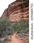 desert scene landscape agave... | Shutterstock . vector #1050684752