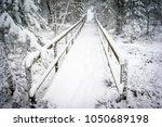 winter scene at abernethy... | Shutterstock . vector #1050689198