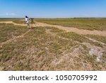 bird watcher  tweecher in... | Shutterstock . vector #1050705992