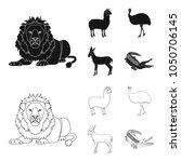 lama  ostrich emu  young... | Shutterstock .eps vector #1050706145
