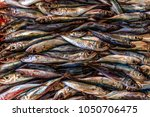 sardines in a fish market in... | Shutterstock . vector #1050706475