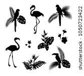 flamingo bird and parrot bird... | Shutterstock .eps vector #1050723422
