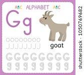 alphabet tracing worksheet for... | Shutterstock .eps vector #1050769682