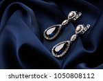 pair of platinum earring with...   Shutterstock . vector #1050808112
