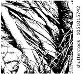 ficus banyan. silhouette. a... | Shutterstock .eps vector #1051015742