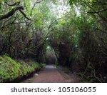 Trail Going Through The...