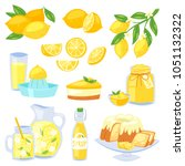 lemon food vector   yellow... | Shutterstock .eps vector #1051132322