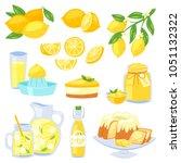 lemon food vector   yellow... | Shutterstock .eps vector #1051132322