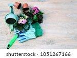 garden tools and flowers  the...   Shutterstock . vector #1051267166