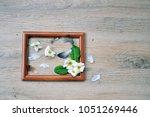 spring flowers on wooden   Shutterstock . vector #1051269446