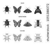 wrecker  parasite  nature ... | Shutterstock .eps vector #1051388372