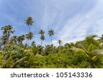 Wilderness of La Digue, Seychelles, Africa - stock photo
