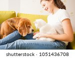 the girl is playing with animals   Shutterstock . vector #1051436708