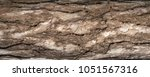 Small photo of Panoramic photo of relief texture of the bark of pine