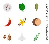 eco condiment icon set. flat... | Shutterstock . vector #1051570256