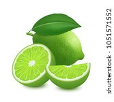 fresh lime fruit. 3d realistic... | Shutterstock .eps vector #1051571552