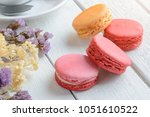 different types color of...   Shutterstock . vector #1051610522