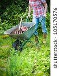 Gardener With A Wheelbarrow...