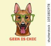 shepherd dog in smart glasses.... | Shutterstock . vector #1051802978