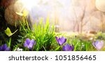 abstract nature spring... | Shutterstock . vector #1051856465
