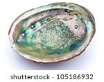 Abalone Shell Inside With...