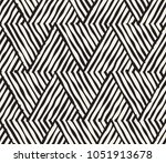 hand drawn black and white ink... | Shutterstock .eps vector #1051913678