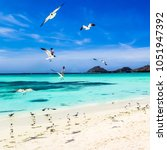 los roques  wonderful... | Shutterstock . vector #1051947392