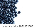 group of blueberry or... | Shutterstock . vector #1051989086