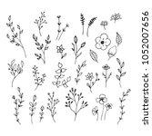 hand drawn romantic flowers....   Shutterstock .eps vector #1052007656