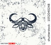 vector african buffalo head ... | Shutterstock .eps vector #1052040248