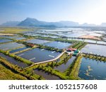aerial view of the prawn farm... | Shutterstock . vector #1052157608