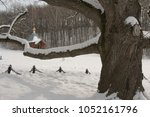 winter park with 200 year old... | Shutterstock . vector #1052161796