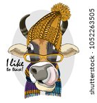 vector cow with glasses  yellow ... | Shutterstock .eps vector #1052263505