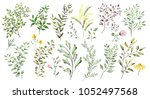 watercolor illustration. ... | Shutterstock . vector #1052497568