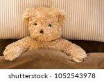 cute brown bear under fleece... | Shutterstock . vector #1052543978